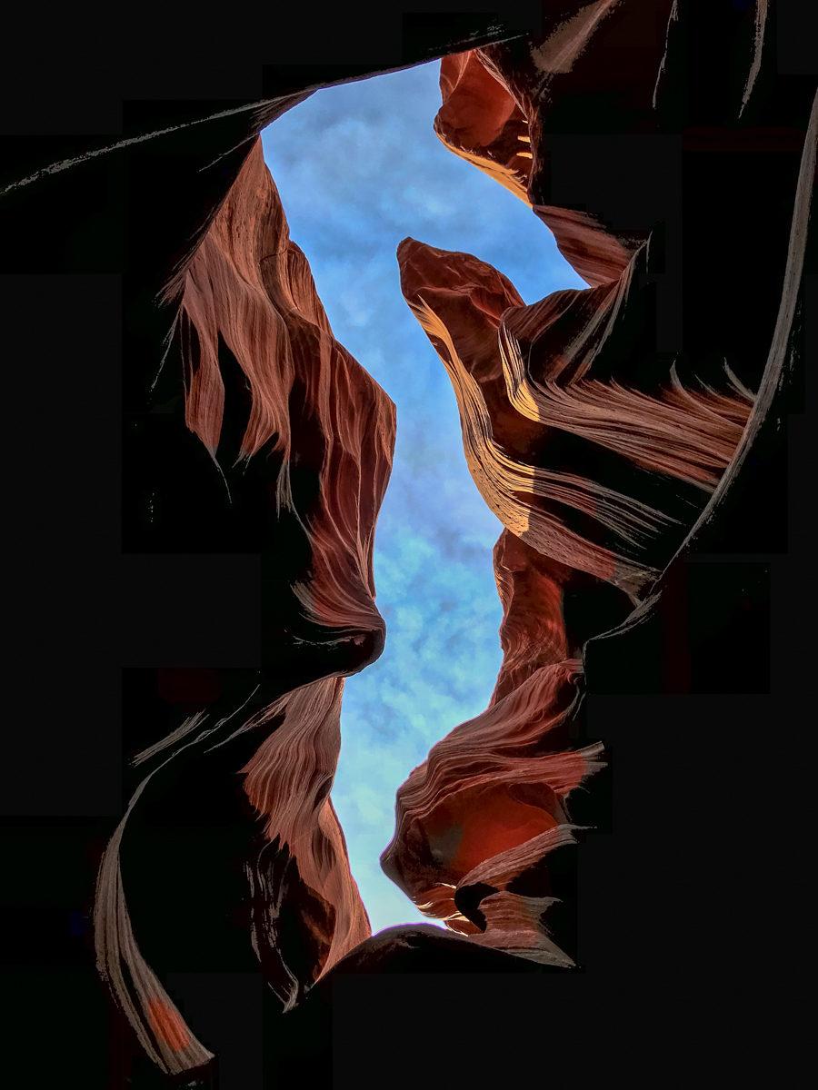 Seepferdchen (Sea-Horse)